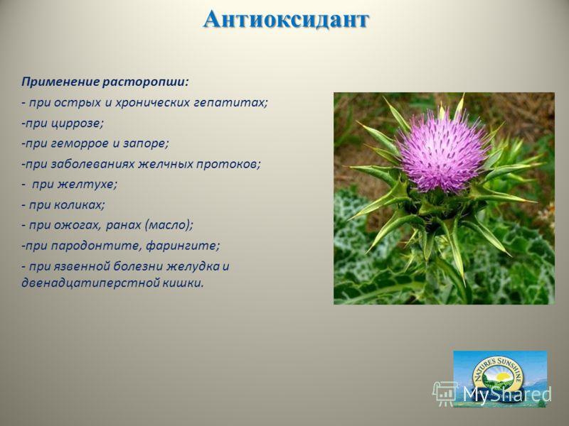 Антиоксидант Применение расторопши: - при острых и хронических гепатитах; -при циррозе; -при геморрое и запоре; -при заболеваниях желчных протоков; - при желтухе; - при коликах; - при ожогах, ранах (масло); -при пародонтите, фарингите; - при язвенной