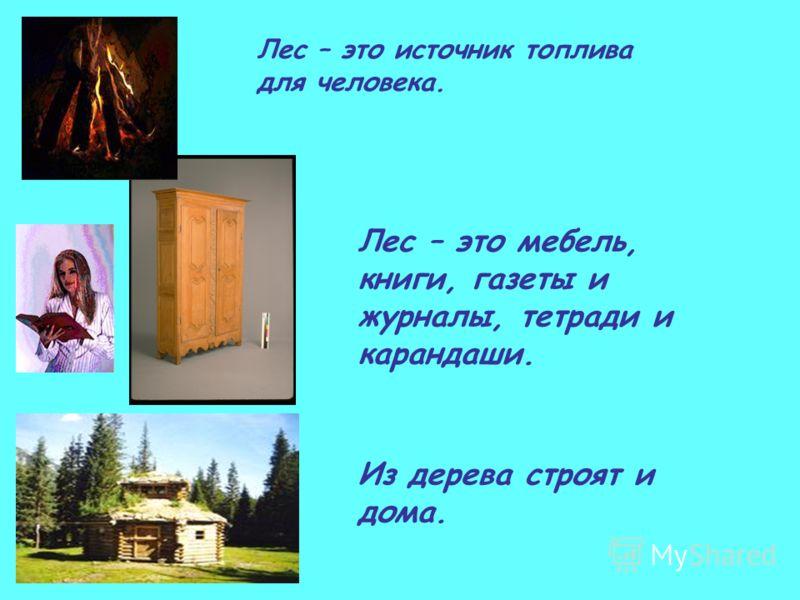Лес – это источник топлива для человека. Лес – это мебель, книги, газеты и журналы, тетради и карандаши. Из дерева строят и дома.
