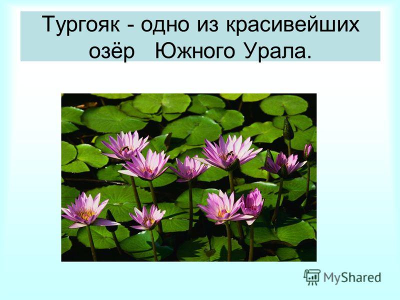 Тургояк - одно из красивейших озёр Южного Урала.