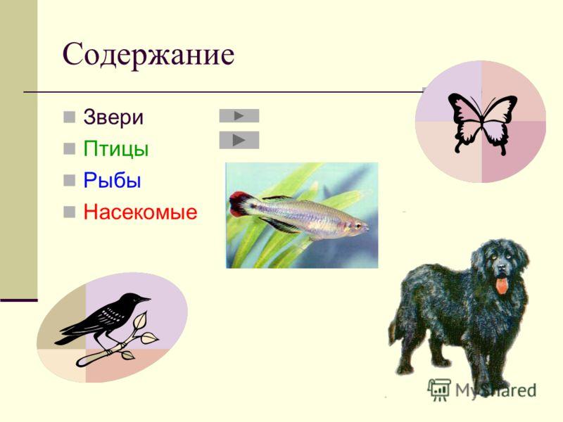 Содержание Звери Птицы Рыбы Насекомые