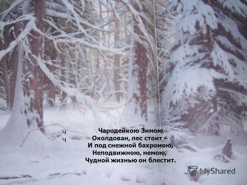 Ч Чародейкою Зимою Околдован, лес стоит – И под снежной бахромою, Неподвижною, немою, Чудной жизнью он блестит.