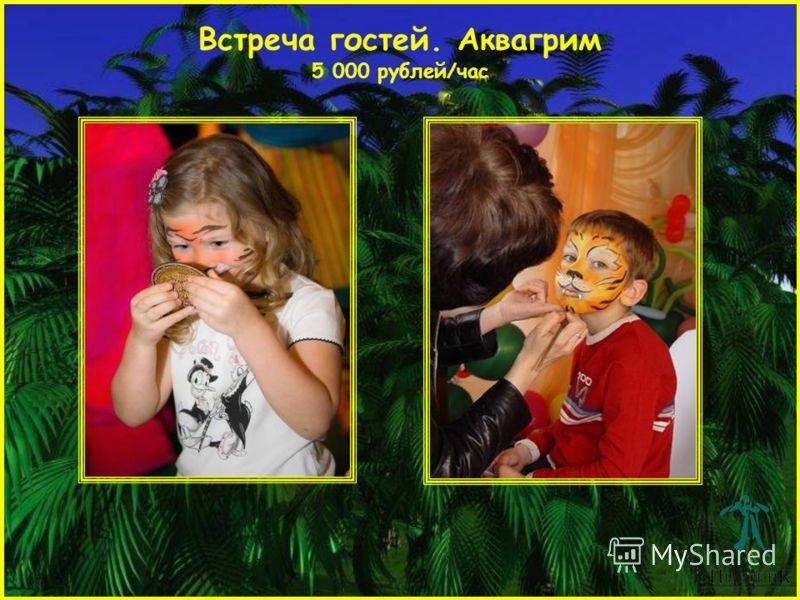 Встреча гостей. Аквагрим 5 000 рублей/час
