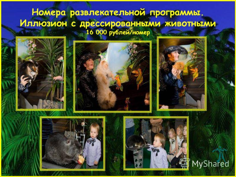 Номера развлекательной программы. Иллюзион с дрессированными животными 16 000 рублей/номер
