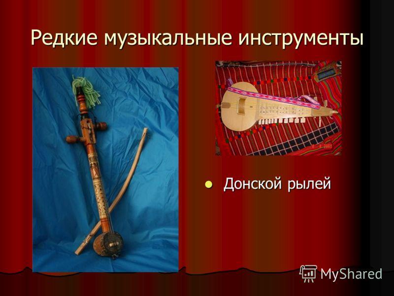 Редкие музыкальные инструменты Донской рылей Донской рылей