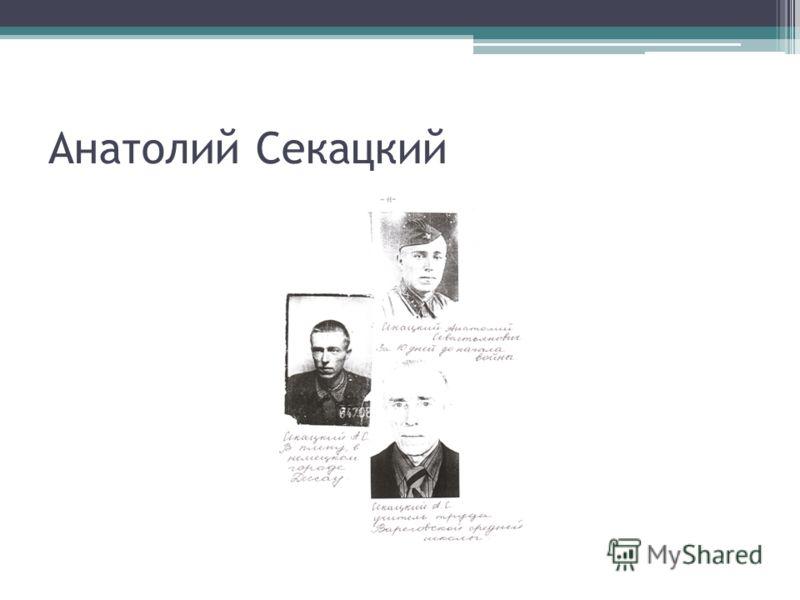 Анатолий Секацкий