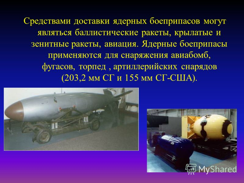 Средствами доставки ядерных боеприпасов могут являться баллистические ракеты, крылатые и зенитные ракеты, авиация. Ядерные боеприпасы применяются для снаряжения авиабомб, фугасов, торпед, артиллерийских снарядов (203,2 мм СГ и 155 мм СГ - США ).