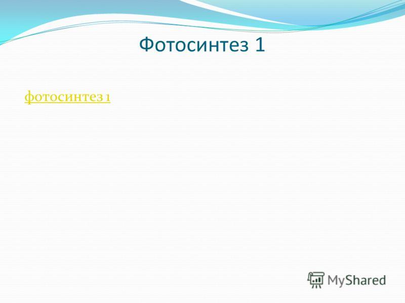 Фотосинтез 1 фотосинтез 1