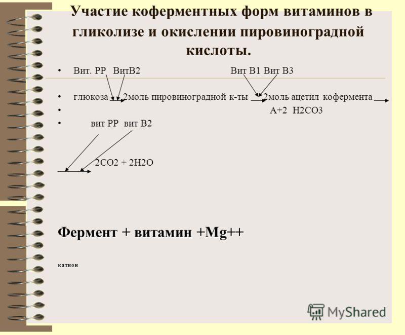 Участие коферментных форм витаминов в гликолизе и окислении пировиноградной кислоты. Вит. PP ВитВ2 Вит В1 Вит В3 глюкоза 2моль пировиноградной к-ты 2моль ацетил кофермента А+2 Н2СО3 вит РР вит В2 2СО2 + 2Н2О Фермент + витамин +Mg++ катион