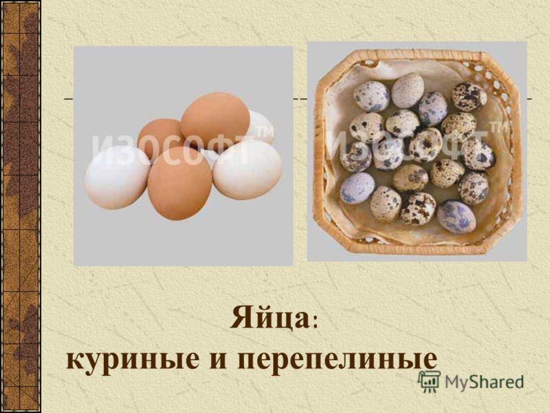 Яйца: куриные и перепелиные