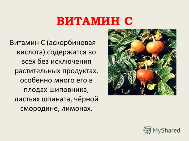 ВИТАМИН С Витамин С (аскорбиновая кислота) содержится во всех без исключения растительных продуктах, особенно много его в плодах шиповника, листьях шпината, чёрной смородине, лимонах.