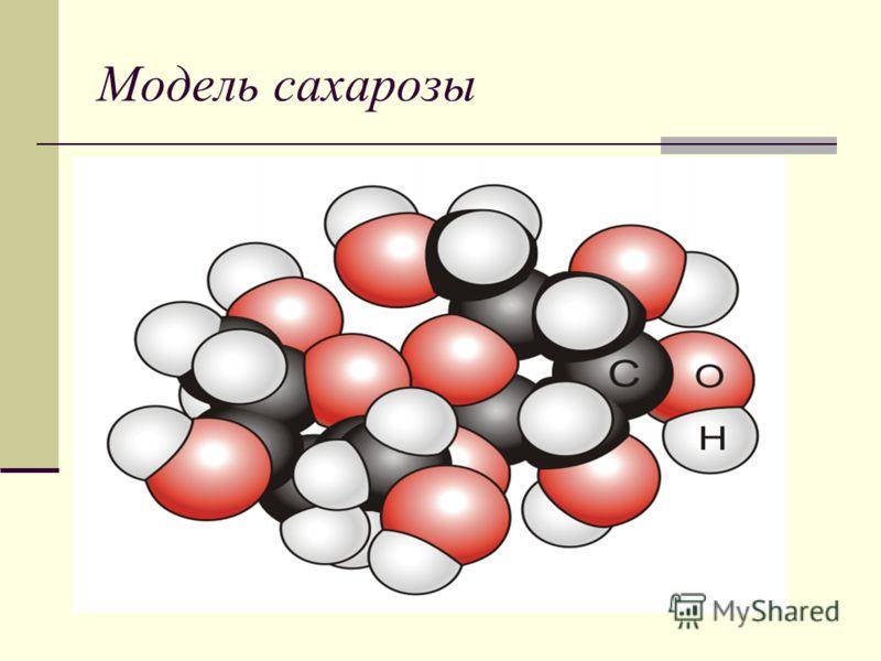 Модель сахарозы