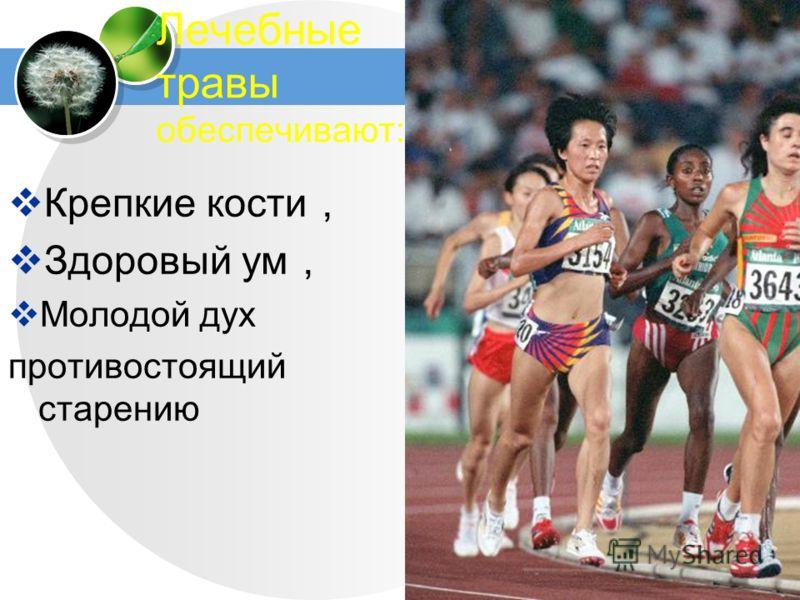 www.themegallery.com Лечебные травы обеспечивают: Крепкие кости Здоровый ум Молодой дух противостоящий старению