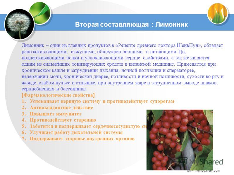 www.themegallery.com Лимонник – один из главных продуктов в «Рецепте древнего доктора ШеньНун», обладает ранозаживляющими, вяжущими, общеукрепляющими и питающими Ци, поддерживающими почки и успокаивающими сердце свойствами, а так же является одним из