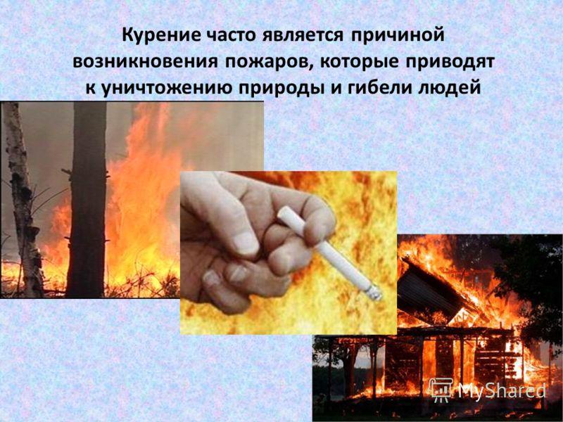 Курение часто является причиной возникновения пожаров, которые приводят к уничтожению природы и гибели людей