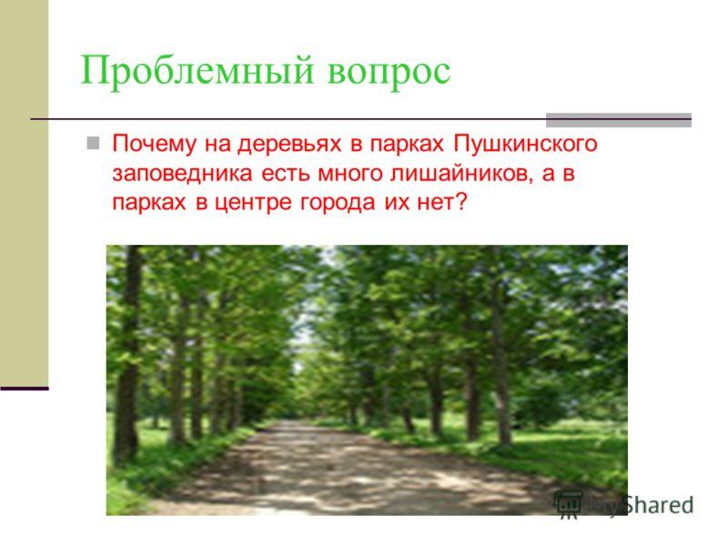 Проблемный вопрос Почему на деревьях в парках Пушкинского заповедника есть много лишайников, а в парках в центре города их нет?