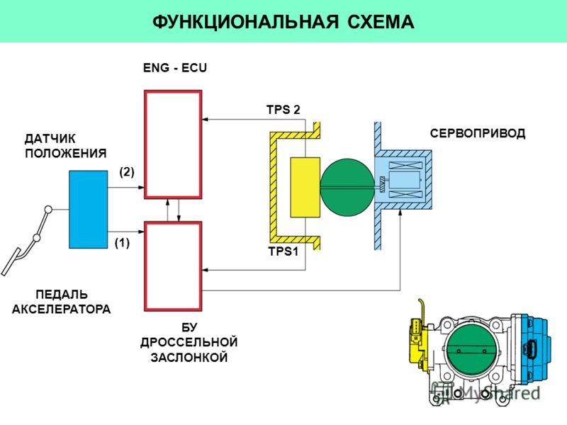 (1) ФУНКЦИОНАЛЬНАЯ СХЕМА