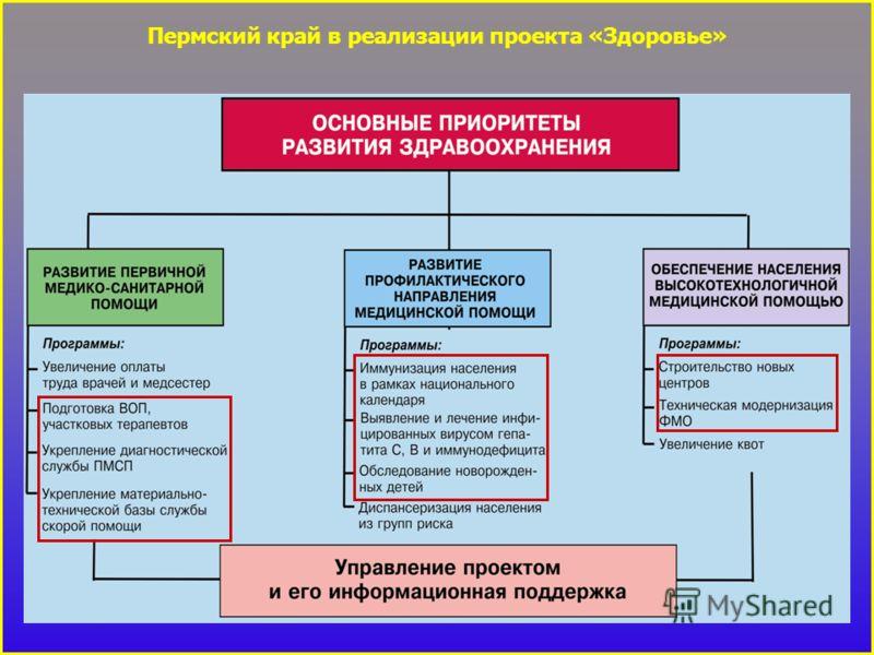 Пермский край в реализации проекта «Здоровье»