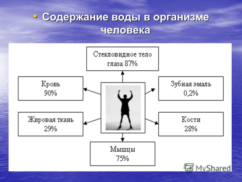 Содержание воды в организме человека Содержание воды в организме человека