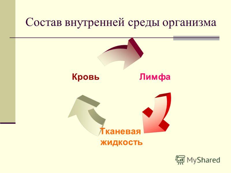 Состав внутренней среды организма Лимфа Тканевая жидкость Кровь