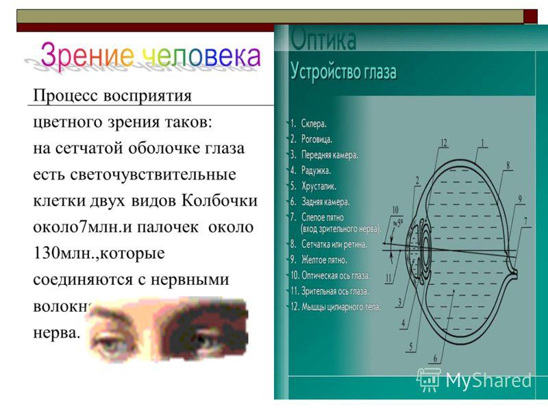 Процесс восприятия цветного зрения таков: на сетчатой оболочке глаза есть светочувствительные клетки двух видов Колбочки около7млн.и палочек около 130млн.,которые соединяются с нервными волокнами зрительного нерва.