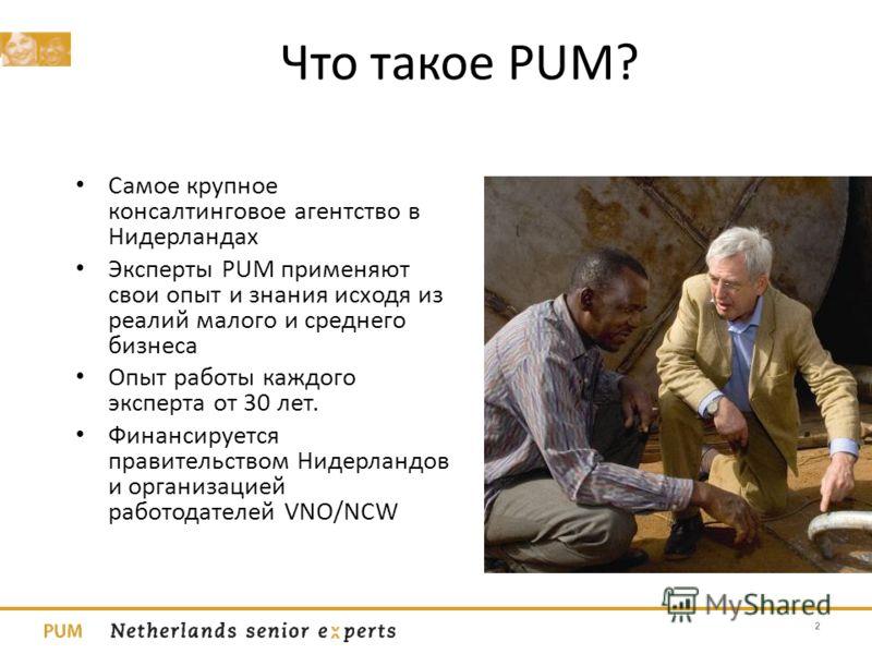 Что такое PUM? Самое крупное консалтинговое агентство в Нидерландах Эксперты PUM применяют свои опыт и знания исходя из реалий малого и среднего бизнеса Опыт работы каждого эксперта от 30 лет. Финансируется правительством Нидерландов и организацией р
