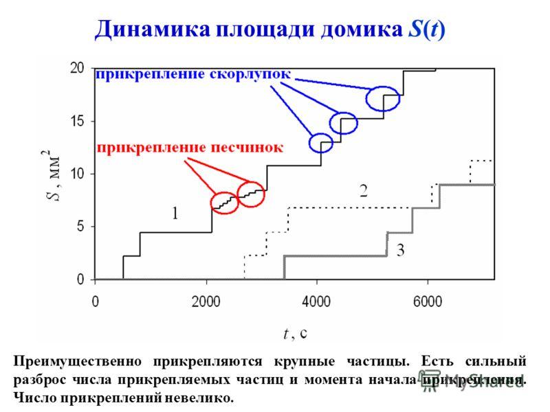 Динамика площади домика S(t) Преимущественно прикрепляются крупные частицы. Есть сильный разброс числа прикрепляемых частиц и момента начала прикрепления. Число прикреплений невелико.