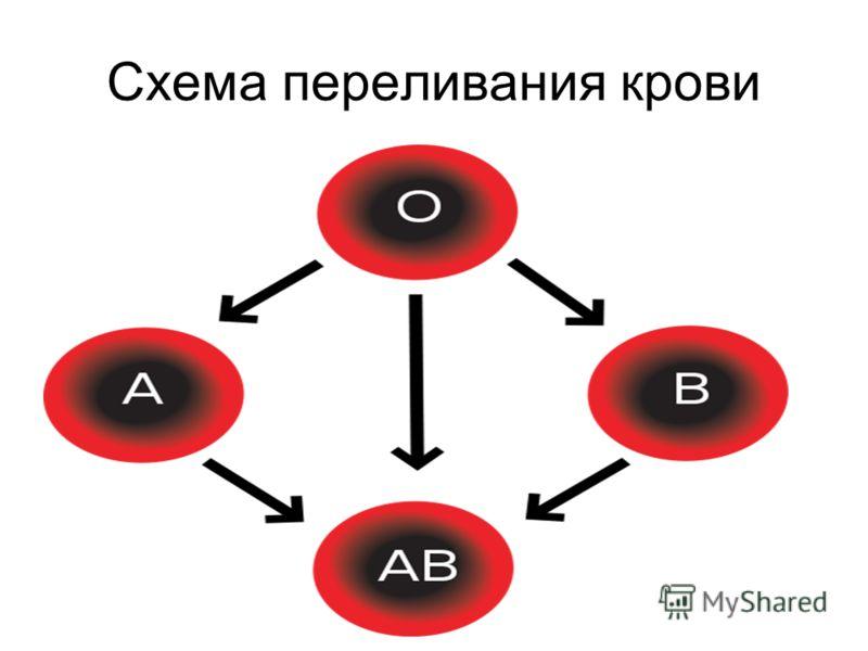 Схема переливания крови
