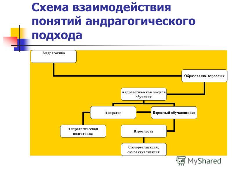 Схема взаимодействия понятий андрагогического подхода
