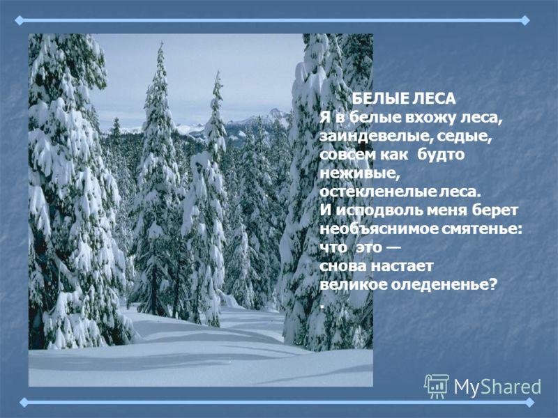 БЕЛЫЕ ЛЕСА Я в белые вхожу леса, заиндевелые, седые, совсем как будто неживые, остекленелые леса. И исподволь меня берет необъяснимое смятенье: что это снова настает великое оледененье?.