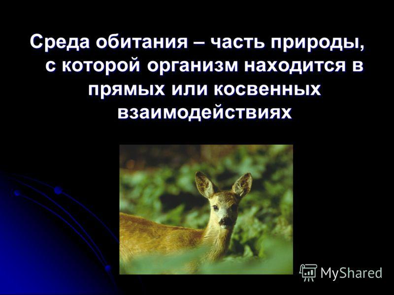 Среда обитания – часть природы, с которой организм находится в прямых или косвенных взаимодействиях