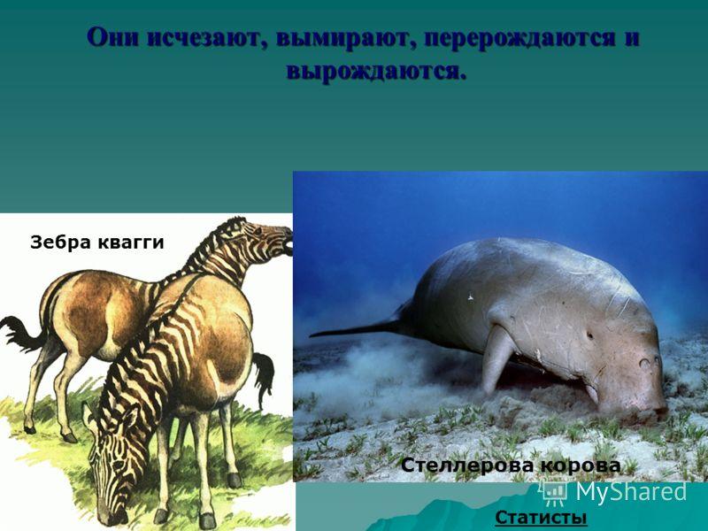 Исчезают вымирают перерождаются и