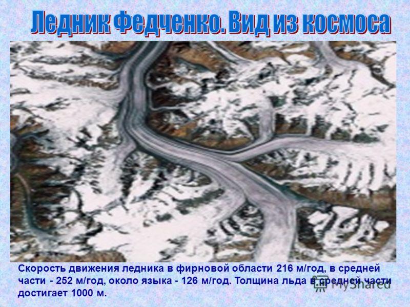Скорость движения ледника в фирновой области 216 м/год, в средней части - 252 м/год, около языка - 126 м/год. Толщина льда в средней части достигает 1000 м.