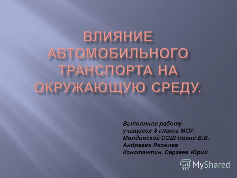 Выполнили работу учащиеся 8 класса МОУ Молдинской СОШ имени В.В. Андреева Яковлев Константин, Сергеев Юрий