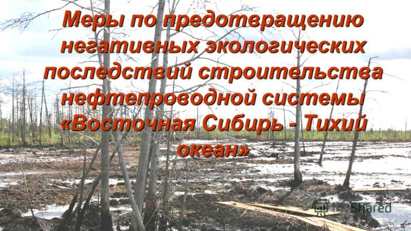 Меры по предотвращению негативных экологических последствий строительства нефтепроводной системы «Восточная Сибирь - Тихий океан»