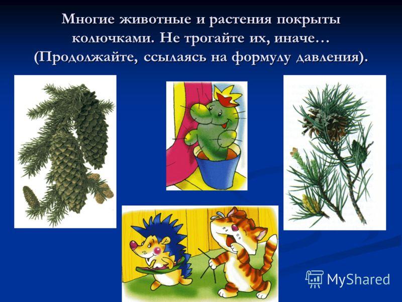 Многие животные и растения покрыты колючками. Не трогайте их, иначе… (Продолжайте, ссылаясь на формулу давления).