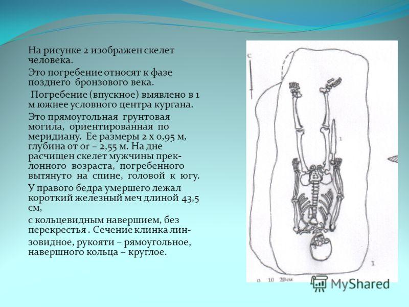На рисунке 2 изображен скелет человека. Это погребение относят к фазе позднего бронзового века. Погребение (впускное) выявлено в 1 м южнее условного центра кургана. Это прямоугольная грунтовая могила, ориентированная по меридиану. Ее размеры 2 х 0,95