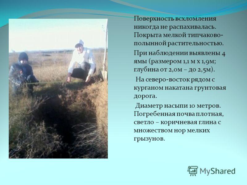 Поверхность всхломления никогда не распахивалась. Покрыта мелкой типчаково- полынной растительностью. При наблюдении выявлены 4 ямы (размером 1,1 м x 1,9м; глубина от 2,0м – до 2,5м). На северо-восток рядом с курганом накатана грунтовая дорога. Диаме