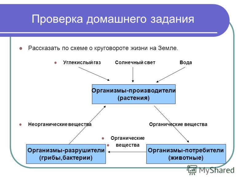 схеме о круговороте жизни