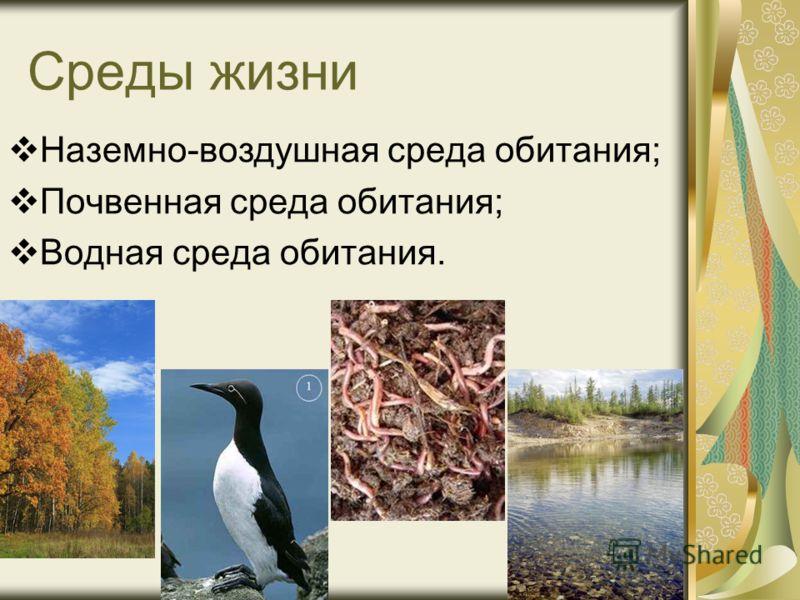 Среды жизни Наземно-воздушная среда обитания; Почвенная среда обитания; Водная среда обитания.