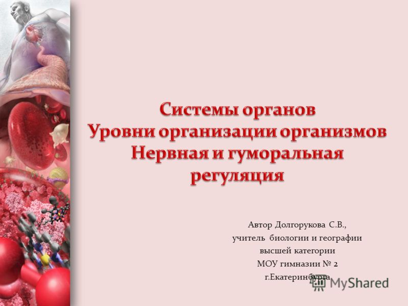 Автор Долгорукова С.В., учитель биологии и географии высшей категории МОУ гимназии 2 г.Екатеринбурга