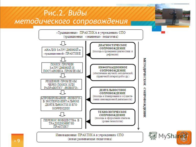 Рис.2. Виды методического сопровождения > 9> 9