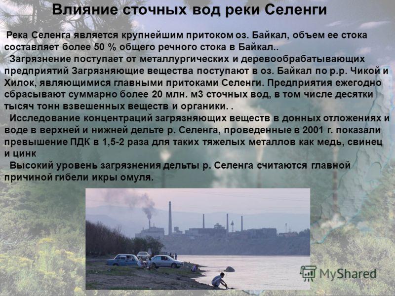 Влияние сточных вод реки Селенги Река Селенга является крупнейшим притоком оз. Байкал, объем ее стока составляет более 50 % общего речного стока в Байкал.. Загрязнение поступает от металлургических и деревообрабатывающих предприятий Загрязняющие веще