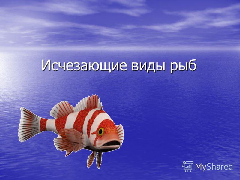 Исчезающие виды рыб