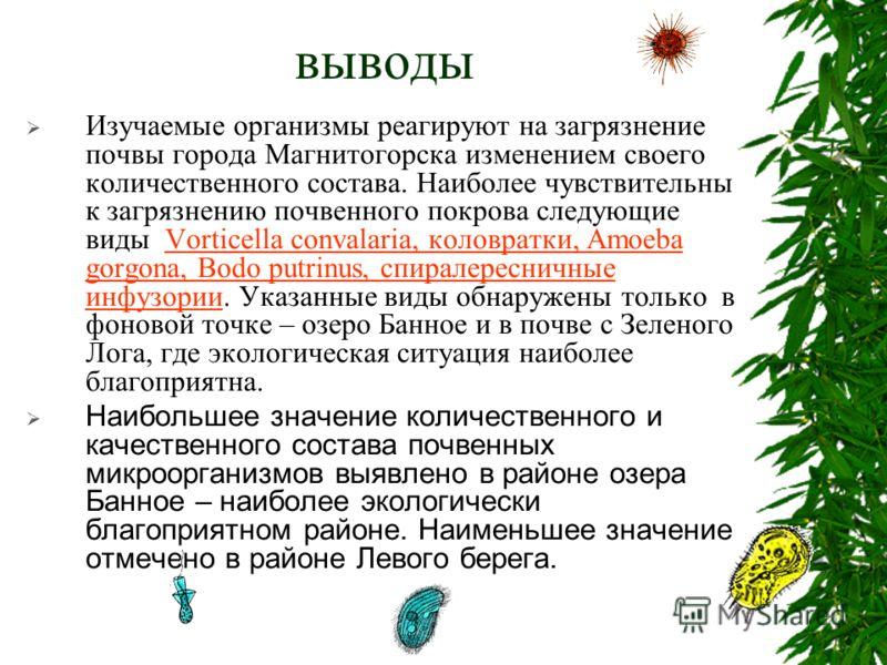 выводы Изучаемые организмы реагируют на загрязнение почвы города Магнитогорска изменением своего количественного состава. Наиболее чувствительны к загрязнению почвенного покрова следующие виды Vorticella convalaria, коловратки, Amoeba gorgona, Bodo p