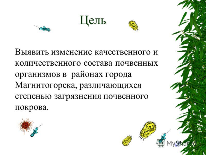 Цель Выявить изменение качественного и количественного состава почвенных организмов в районах города Магнитогорска, различающихся степенью загрязнения почвенного покрова.
