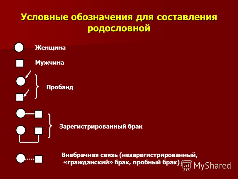 Условные обозначения для составления родословной Женщина Мужчина Пробанд Зарегистрированный брак Внебрачная связь (незарегистрированный, «гражданский» брак, пробный брак)