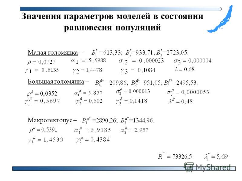 Значения параметров моделей в состоянии равновесия популяций Малая голомянка – Большая голомянка – Макрогектопус –