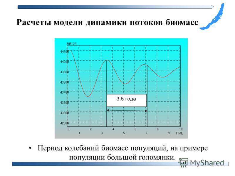 Период колебаний биомасс популяций, на примере популяции большой голомянки. Расчеты модели динамики потоков биомасс 3.5 года