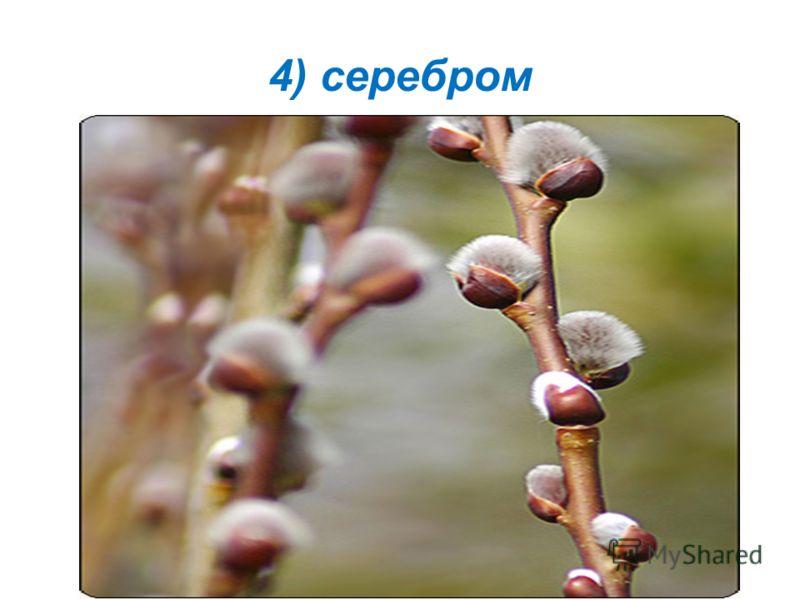 4) серебром