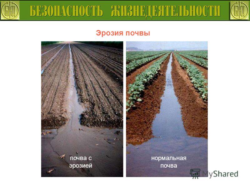 Эрозия почвы нормальная почва почва с эрозией